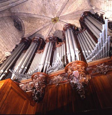 Vue des tuyeaux argentés du grand orgue de Notre-Dame